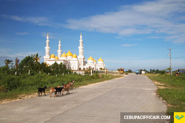 ve-may-bay-di-cotabato-2-27-08-2015