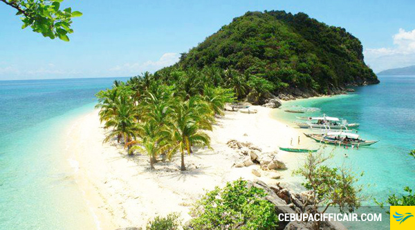 ve-may-bay-di-roxas-3-17-08-2015
