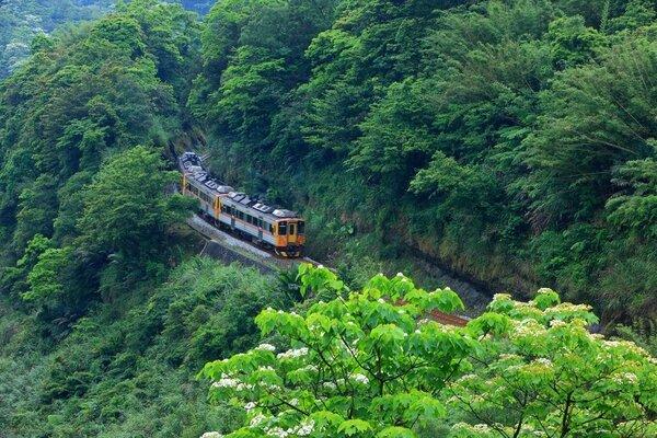 Vé máy bay đi Đài Loan 2021